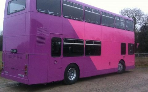 pink1-4598e3057dc7a7a0013fabea05dcc4f5
